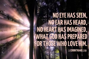 No eye has seen no ear has heard no heart has imagined all that God has prepared for those who love Him
